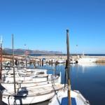 Alcudia Ortsteil Es Bacarès mit kleinen Hafen Es Bacarès